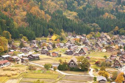 Nagoya: UNESCO Tour to Shiragawago & Takayama