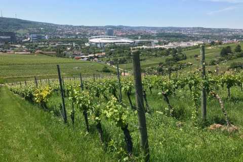 Stuttgart: VDP-Wine Tour