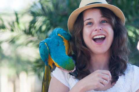 Cartagena: National Aviary of Colombia Entrance Tickets