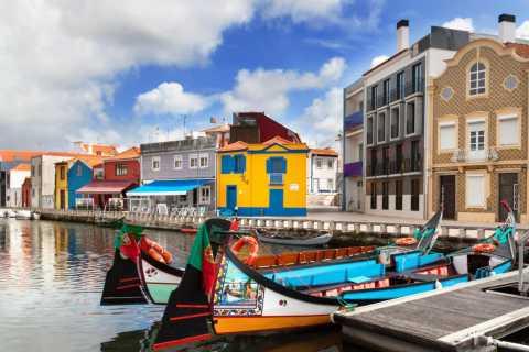 Oporto, Braga, or Guimarães: Coimbra and Aveiro Private Tour