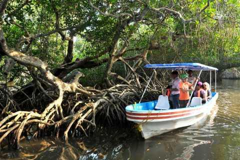 From Veracruz: Nature & Seafood Boat Tour to Madinga