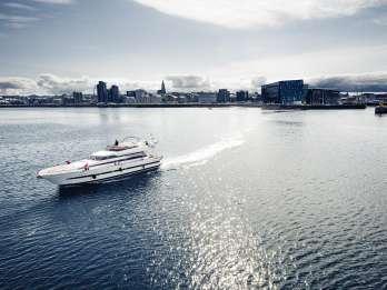 Reykjavik: Walbeobachtungskreuzfahrt in kleinen Gruppen