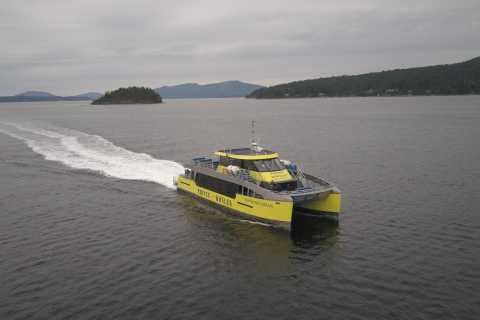 Victoria: 3-Hour Whale Watching Cruise by Covered Boat