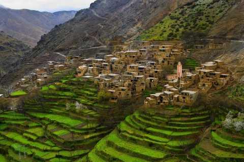 Atlasgebergte: berberdorpen & 3 valleien dagtrip