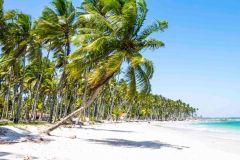 De Recife: Viagem Guiada de 1 Dia à Praia dos Carneiros