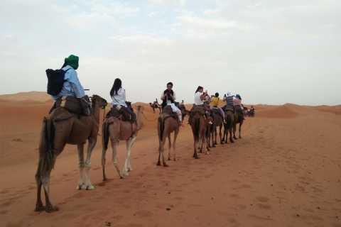 Zagora: Viagem de 2 Dias pelo Deserto saindo de Marrakech