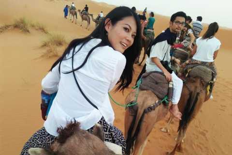Zagora: 2-Day Desert Trip from Marrakech