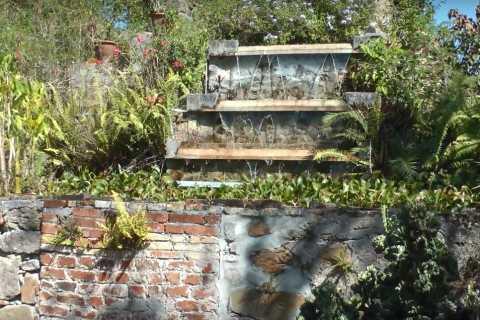 St Croix: 4-Hour Visit to St George Village Botanical Garden