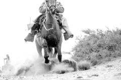 Mendoza: Passeio a Cavalo nos Andes com Churrasco Autêntico