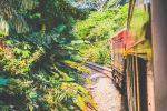 Panama City: Panama Canal, Railway and Monkey Island Tour