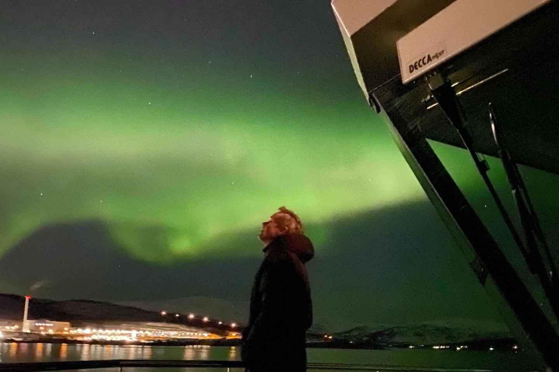 Tromsø: Nordlichter-Bootstour per Elektro-Katamaran & Essen