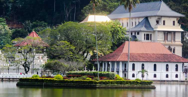 Colombo or Negombo: Temple of the Tooth Kandy Day Trip