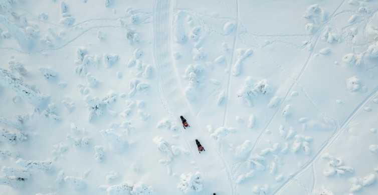 Lapland: Full-Day Snowmobile Safari into the Wilderness