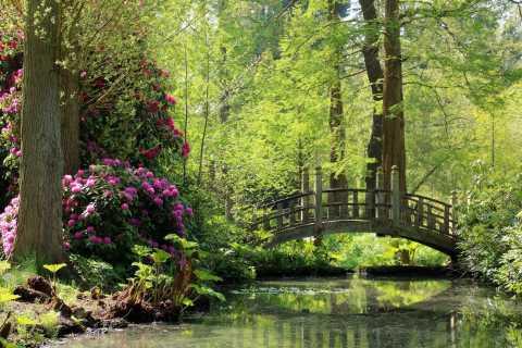Birmingham: ingresso para Winterbourne House and Garden