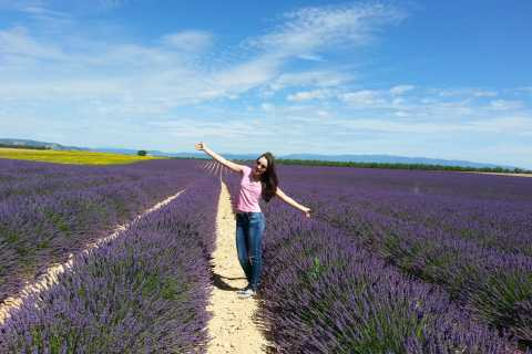 Private Lavender of Provence Tour