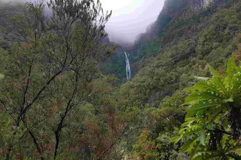 Madeira: Private Walking Tour of Levada das 25 Fontes