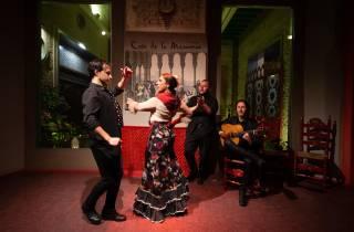 Sevilla: Casa de la Memoria Flamenco-Show