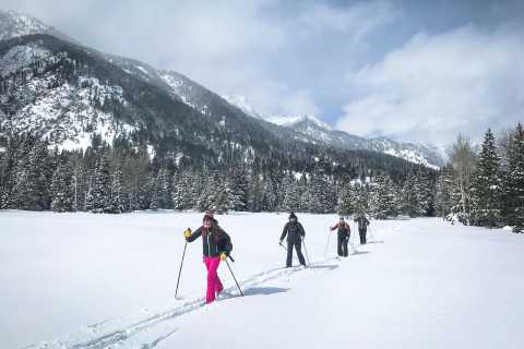 Grand Teton National Park: 8-Hour Willdlife & Snowshoe Tour