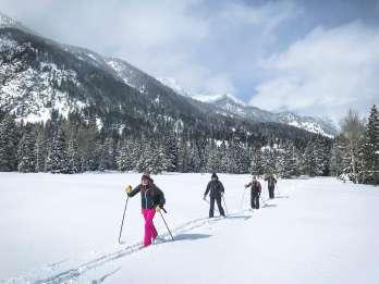 Grand Teton National Park: 8-stündige Willdlife- und Schneeschuhtour