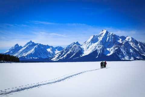 Grand Teton National Park: 4-Hour Beginner Cross-Country Ski