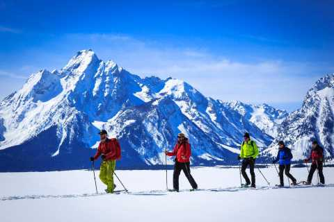 Grand Teton National Park: 4-Hour Easy Snowshoeing Tour