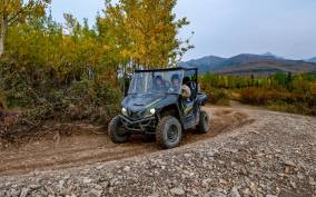 Denali National Park: Wilderness ATV Adventure