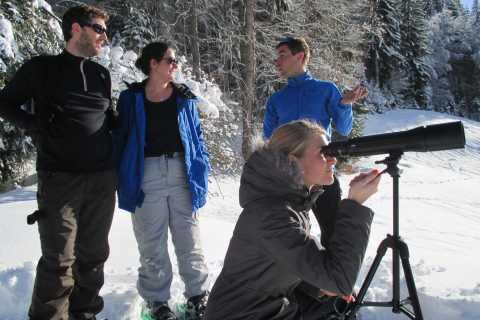 Megève: Randonnée d'observation de la faune en raquettes