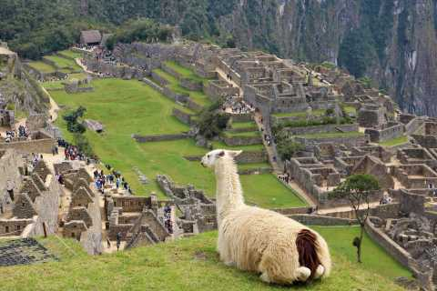 Lima: 9-Day Peru Express with Ica, Cusco, and Puno