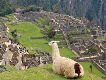 Lima: 9-tägiger Peru Express mit Ica, Cusco und Puno