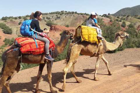 Marrakech: Day Trip to Atlas Mountains and Berber Villages