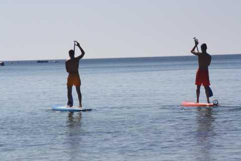 Armação de Pêra: Stand Up Paddle Hire