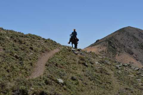 From Mendoza: Gaucho Experience Full Day