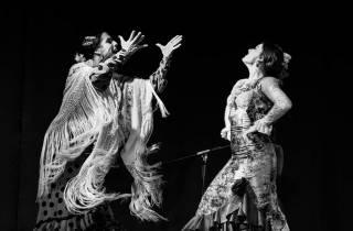 Madrid: Flamenco-Show im Café Ziryab
