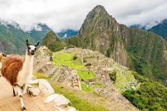 De Cusco: Excursão 1 Dia Machu Picchu c/ Almoço Opcional