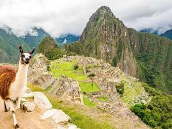 Ab Cusco: Tagestour nach Machu Picchu mit Mittagessen-Option