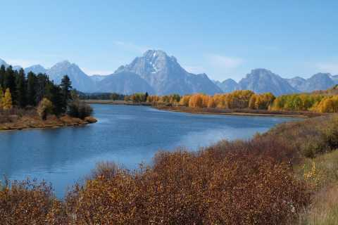 Jackson: Grand Teton National Park Half-Day Small-Bus Tour