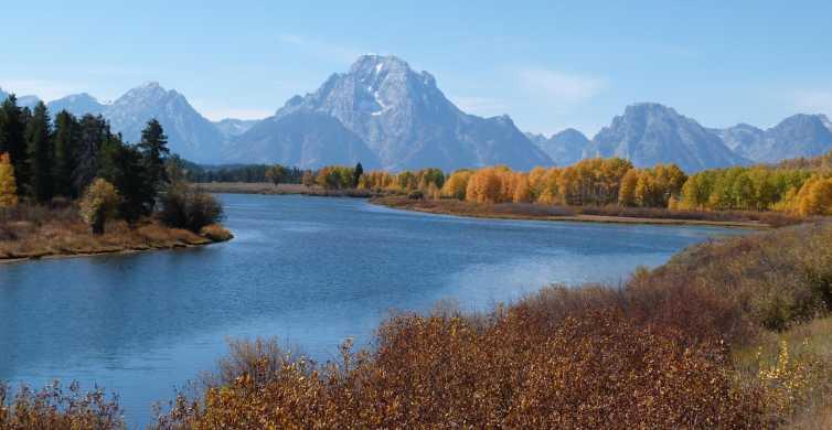 Jackson: Grand Teton National Park Half-Day Small-Bus Tour