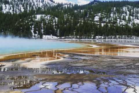 Jackson, Wyoming: Full-Day Yellowstone Lower Loop Tour