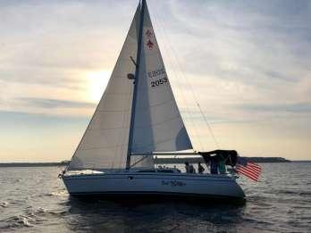 Hilton Head Island: Private 2,5-Stunden-Segel- und Delphinwache