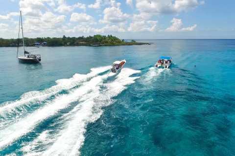 Punta Cana: Saona Island and Buggy Combo