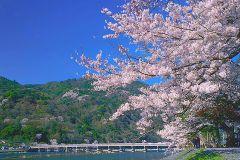 De Osaka: Dia de ônibus para Kyoto e Nara