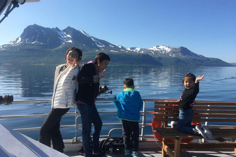 Tromsø: 5 Stunden All-Inclusive Wildnisbeobachtungsausflug
