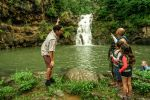 Oahu: North Shore Waterfall Adventure with Pickup