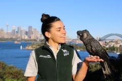 Sydney: Ingressos para o Taronga Zoo