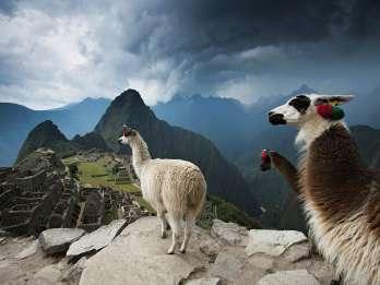 Von Cusco: Machu Picchu Ganztägige Privattour