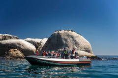 Cidade do Cabo: Excursão Marinha saindo de V&A Waterfront