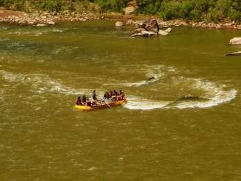 Ganztägige Colorado Rafting Tour ab Moab