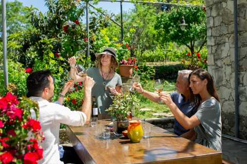 From Chania: Sacred Paths Wine Tour with a Sommelier