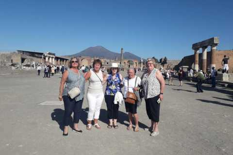 From Rome: Pompeii Ruins and Mt. Vesuvius w/ Lunch & Wine