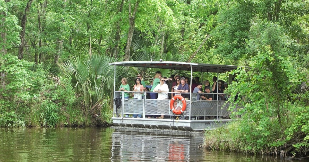 New Orleans: Swamp Tour in National Park and Preserve
